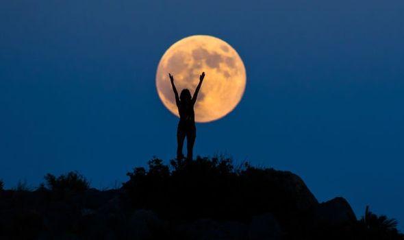 harvest-moon-